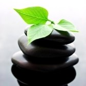 8351162-spa-stones-stacked-in-perfect-balance-with-leaf